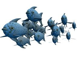Lots of Social Media Fish